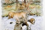 Ukázka ilustrací z knihy o Enzovi.