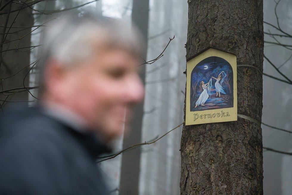 Obrázky na stromech v lese Ochoza u Vysočina arény v Novém Městě na Moravě.