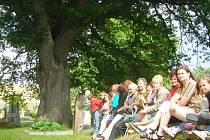 Pro prosetínské evangelíky představuje starý dub u kostela symbol jejich protestantské víry.