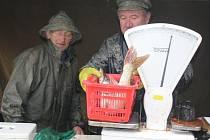 Celkem třikrát natáhli síť rybáři ze společnosti Kinský Žďár, postarali se tak o výlov rybníka Velké Dářko. Kromě kapra skončili v kádích také candáti, štiky, okouni nebo sumci. Vodní obratlovce si v taškách odnášeli domů i přihlížející.