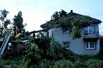 Stará lípa v obci Moravec na Žďársku nevydržela nápor větru. Pomáhat s odstraněním stromu museli hasiči.