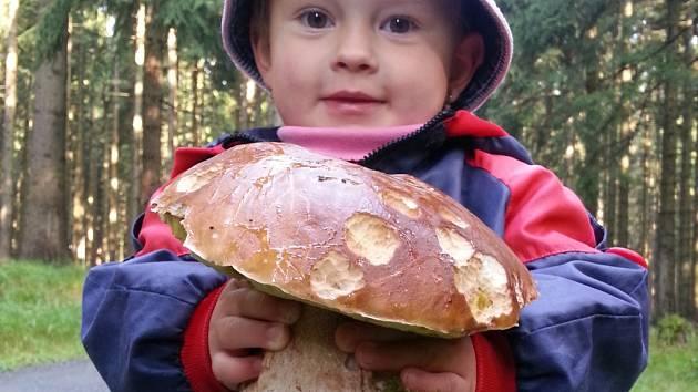 Radost z jakéhokoliv houbařského nálezu bývá veliká.