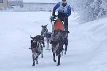 Závody se musely líbit i divákům. Ti mohli spojit podívanou s běžeckým lyžováním a s pohledy do novoměstské krajiny.