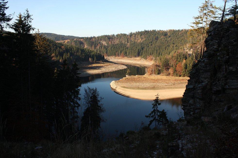 Solitér roste na skalnatém ostrohu levého břehu Vírské přehrady.