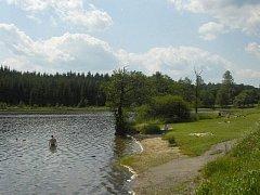 Rybník Medlov.