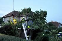 Stará lípa v obci Moravec na Žďársku nevydržela nápor větru. Pomáhat s odstraněním stromu museli hasiči (28. 7.2020).