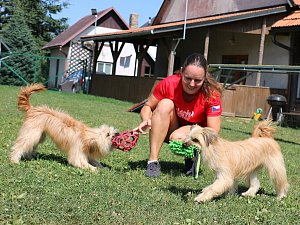 Učím psy triky, které mi sami nabídnou, říká Jitka Hrdinová z Fryšavy