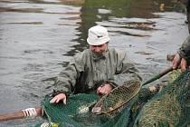 Studená dubnová voda pozvané rybáře neodradila. Nejen je, ale i přihlížející dokonale zahřál hrnek plný horkého čaje s rumem
