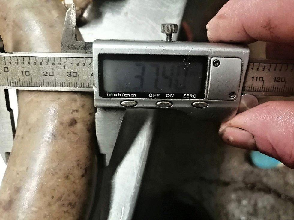 Obří jitrnice s mírami 11,79 (metrů), 9,8 (kilogramů) a 3,7 (centimetrů – průměr výrobku uprostřed) byla zapsána do České databanky rekordů.