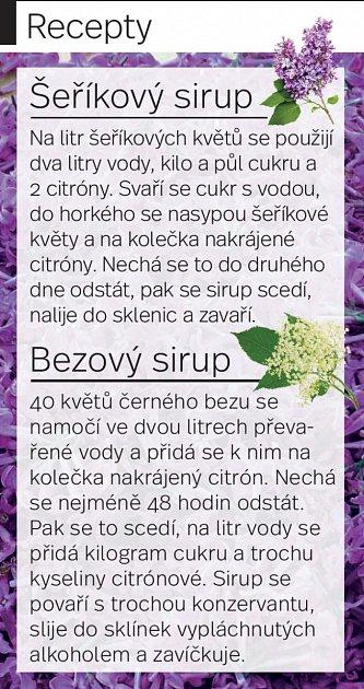Na šeříkový sirup nedá dopustit učitelka ze Svitav Renáta Škeříková.