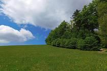 Jarní procházka částí CHKO Žďárské vrchy.