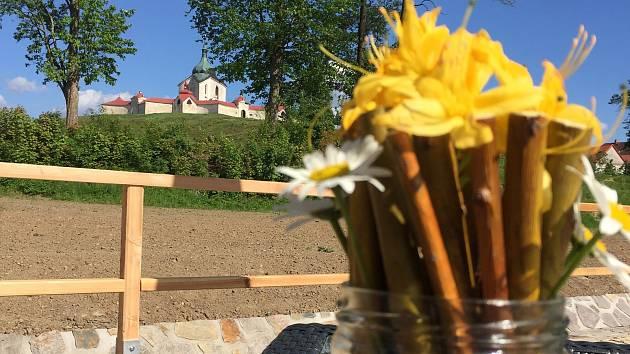Mezi exponáty Muzea nové generace ve Žďáře rozkvetly květiny. Kdo je správně spočítá, může v jarní soutěži, kterou muzeum připravilo, hrát o noc v barokní věži nebo o volné vstupenky do libereckého IQ parku.
