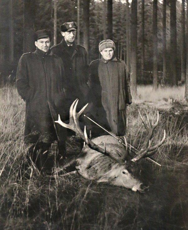 Do Žďárských vrchů se kdysi jezdilo na jeleny.