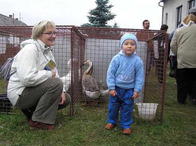 """Kubík Jurda z Bruntálu obdivoval s maminkou husy a kachny. """"Jezdíme k rodině do Dolní Rožínky, takže jsme si to nemohli nechat ujít. To víte, syn má dva roky,"""" smála se Marcela Jurdová."""
