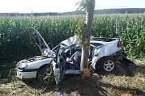 Mladý řidič naboural u Pikárce do stromu.