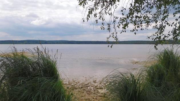 U rybníka Velké Dářko na Žďársku nudisté odedávna využívají malé písčité pláže rozeseté na opačném břehu od hráze rozlehlé vodní plochy.