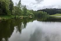 Několik navrhovaných projektů se dotýká stejné lokality – areálu u novoměstského rybníka Koupaliště.