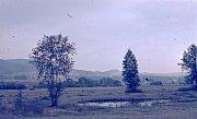 V lokalitě Hliníky u Křižánek se dříve těžila cihlářská hlína.