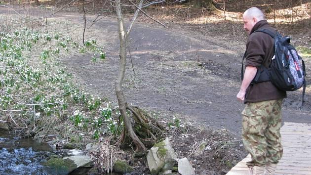 Chráněné rostliny se ve žďárském okrese vyskytují na několika místech. Jako první na jaře rozkvétají bledule na březích Chlébského potoka u Chlébského na rozhraní Vysočiny a Jihomoravského kraje.