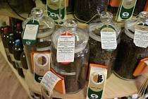 Novoměstská Zdravěnka Drahuška nabízí několik druhů kvalitních káv. Vyberou si i fajnšmekři.