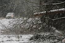 Ve čtvrtek se podařilo obnovit provoz na všech železničních tratích v kraji. Zavřeno zůstalo pouze několik lesních úseků silnic.
