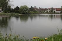Na první pohled krásná a čistá vodní hladina rybníka v Nové Vsi u Nového Města na Moravě skrývá děsivé tajemství. Ve vodě se totiž nachází velké množství ropných produktů a těžkých kovů.