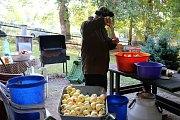Lisování jablečné šťávy je doslova společenskou událostí. Sejdou se při něm rodinní příslušníci, přátelé i známí.