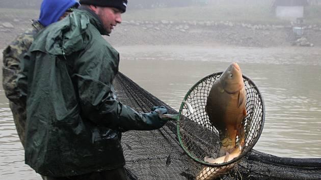 V sítích se mrskali kapři, líni a další ryby.