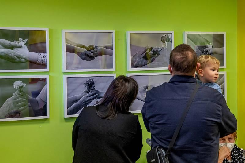 Výstava Souznění II. je otevřena ve Family Pointu ve Žďáře nad Sázavou.