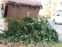 Čas vánočních stromků přijde zas až za rok. Svoz odložených stromků začne ve Žďáře po druhé lednové neděli.