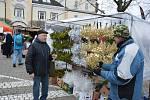 Vánoční trhy 2019 ve Světlé nad Sázavou.