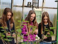 Mít na školní zahradě skleník je ve žďárském okrese raritou.