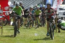 Do září budou v provozu v novoměstském lese Ochoza takzvané singltreky. Dohromady budou cyklistické trasy u Nového Města měřit třicet kilometrů. Malou část si z nich lidé včera mohli projet.