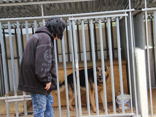 Zařízení v Jihlavské ulici provozuje obecně prospěšná společnost Úsvit, která ho v průběhu minulého roku vybudovala na pozemku pronajatém žďárskou radnicí. Aktuálně jsou v kotcích umístěni dva psi.