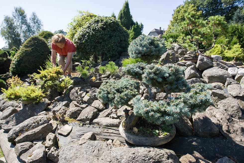Japonská zahrada ve Sněžném na Žďársku.