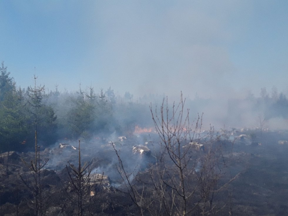 U Kochánova na Žďársku hořel les.
