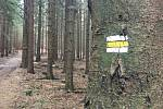 Vlčí kámen najdou zájemci v lesích u Koníkova.