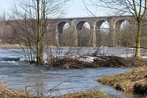 Lokálně zatopené louky u Ostrova nad Oslavou.