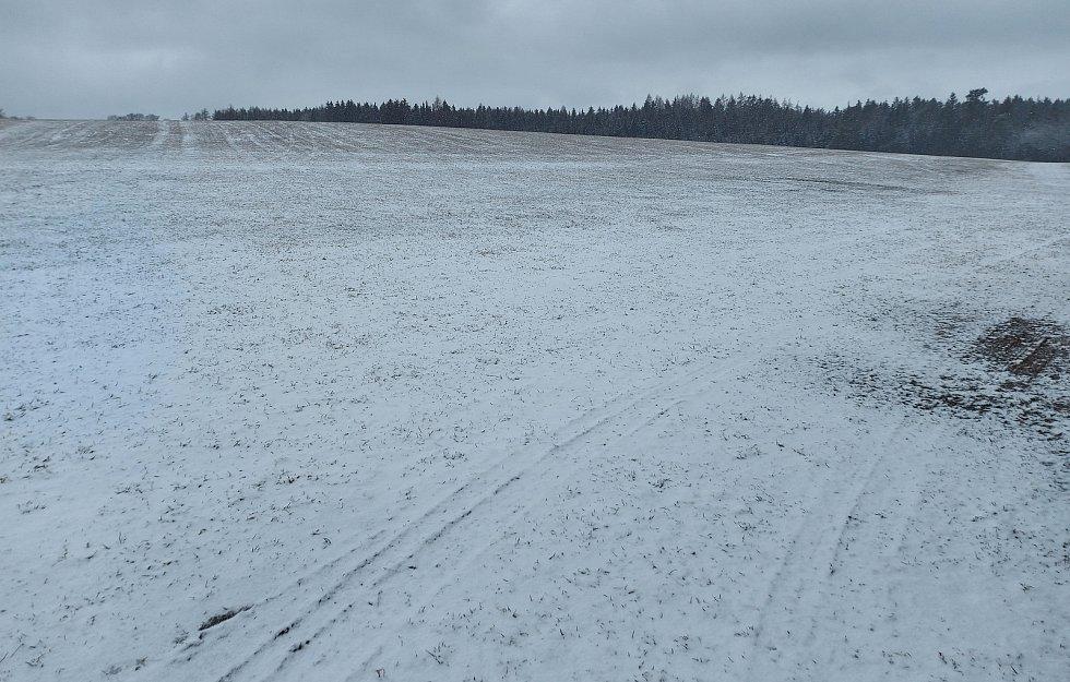 Okolí Pilské nádrže na začátku března.