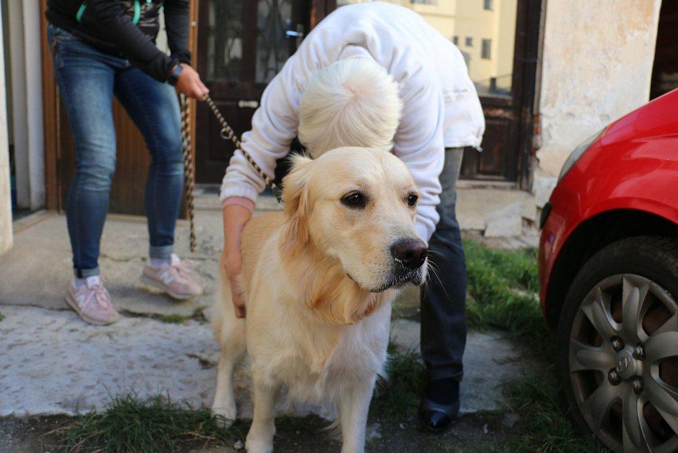 Marie Dobrovolná provozuje veterinární praxi ve Žďáře nad Sázavou a v Novém Městě na Moravě.