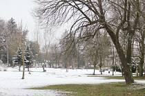 Plány na oživení parku dostávají konkrétní podobu, veřejná soutěž na dodavatele má vítěze. Revitalizace a soupis městské zeleně vyjdou na 5,3 milionu korun.
