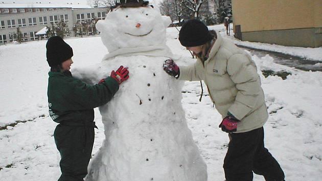 Redakce týdeníku Vysočina vyhlašuje čtenářskou soutěž. Hledáme nejoriginálnější výtvor vyrobený, postavený či vytesaný ze sněhu.