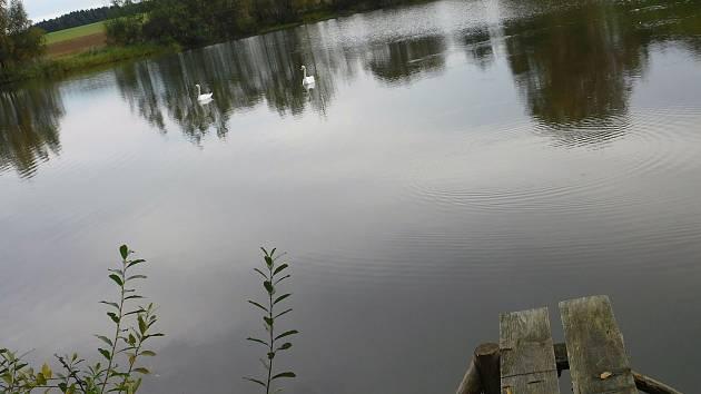 Začínající podzim kolem Vetelských rybníků.
