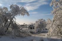 Zasněžená zimní Vysočina pohledem naší čtenářky. Podívejte se