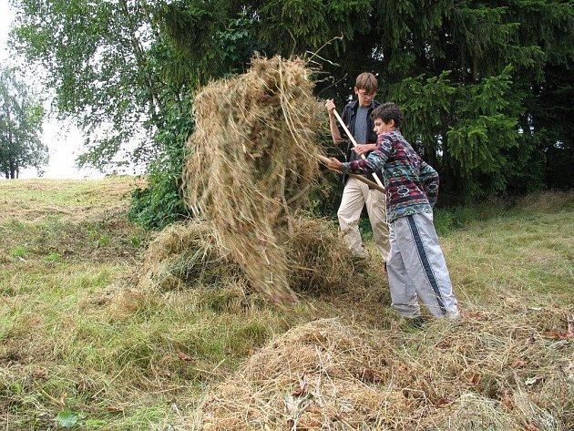Louky u Vojnova Městce ochranáři v létě kosí (na snímku), na podzim pak prořezávají náletové dřeviny.
