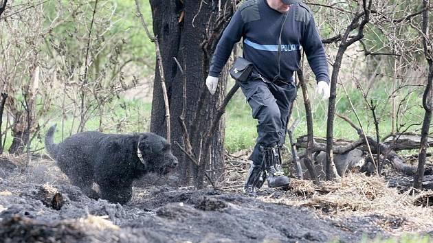 Lom v Novém Městě na Moravě prohledávali policisté a hasiči