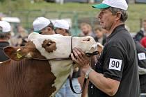 Přehlídku Den českého strakatého skotu hostila Radešínská Svratka jakožto největší výstavu dobytka svého druhu v České republice.