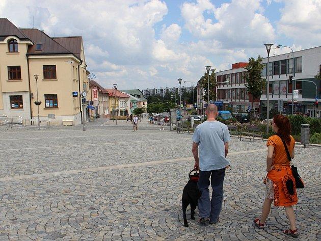 Nevidomí se ve Žďáře zdokonalují v práci se slepeckými psy