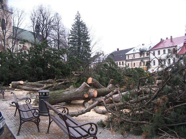 Výměna borovic černých v Novém Městě na Moravě.