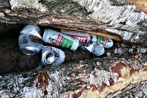 V lesích lze najít stopy po návštěvnících i lesních dělnících.